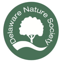 Community Educator/Organizer – Delaware Nature Society's DuPont Environmental Education Center